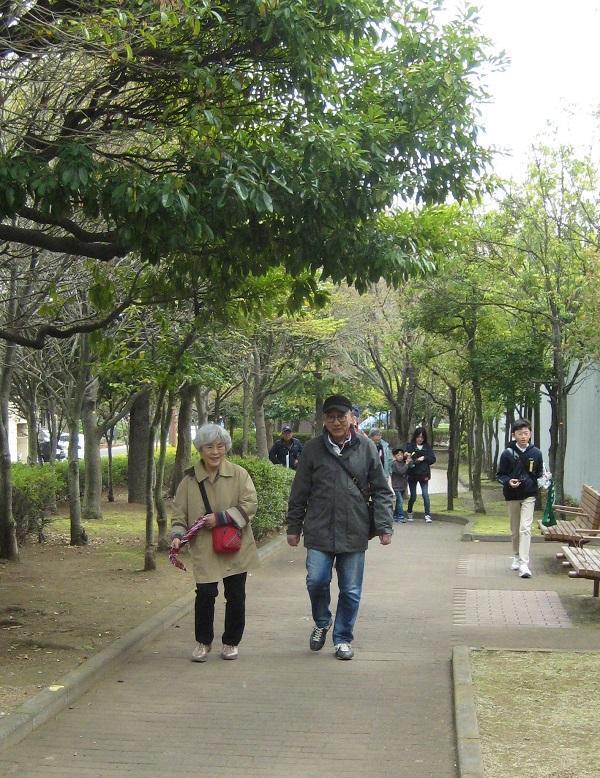Walking_201903-2.JPG